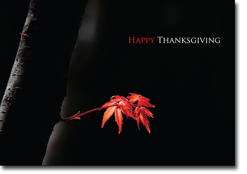 thanksgiving cards for business - Google Search
