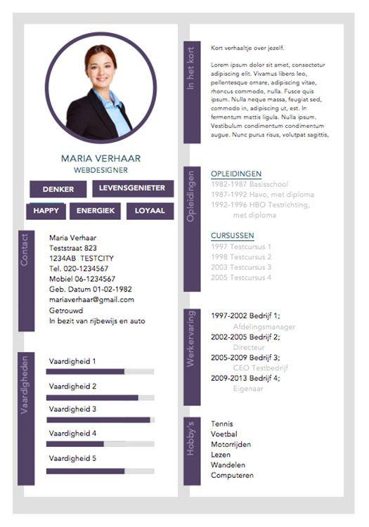 Mooi professioneel CV sjabloon | Mooie CV sjablonen | Pinterest