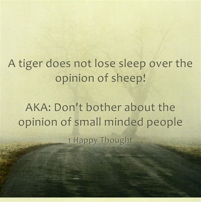 Dont Bother About The Opinion Of Small Minded People