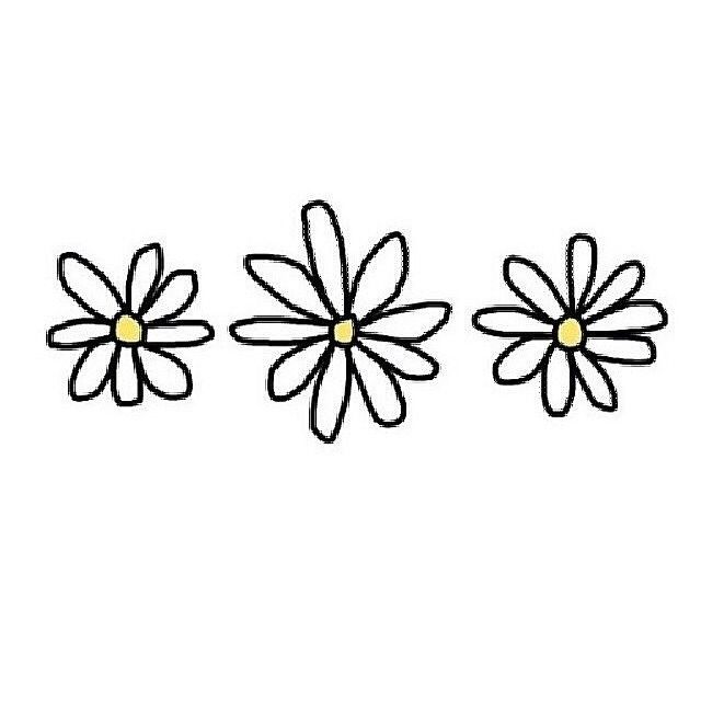 Daisies Tumblr Flower Tumblr Png Tumblr Transparents