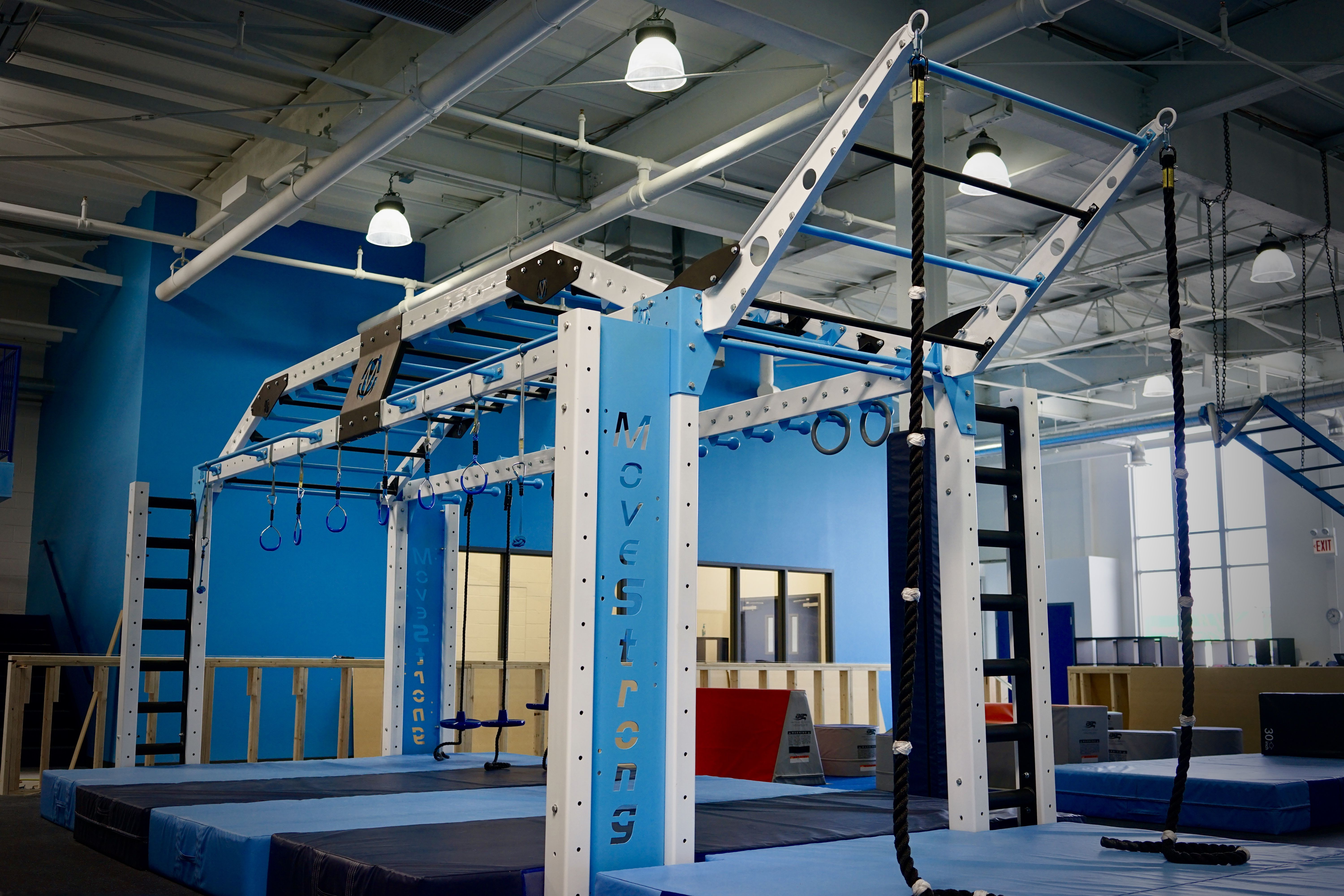 Custom functional fitness gym rack with monkey bars rope