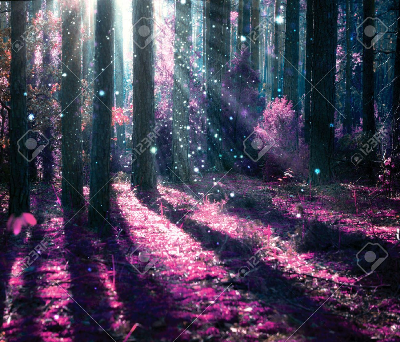 Image Result For Fantasy Jungle Photo Beams Of Light