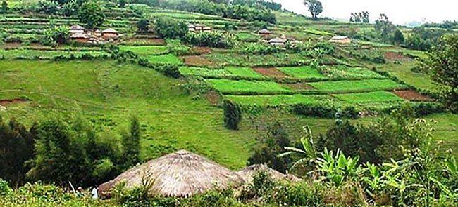 Mugamba   Outdoor, Burundi, Golf courses