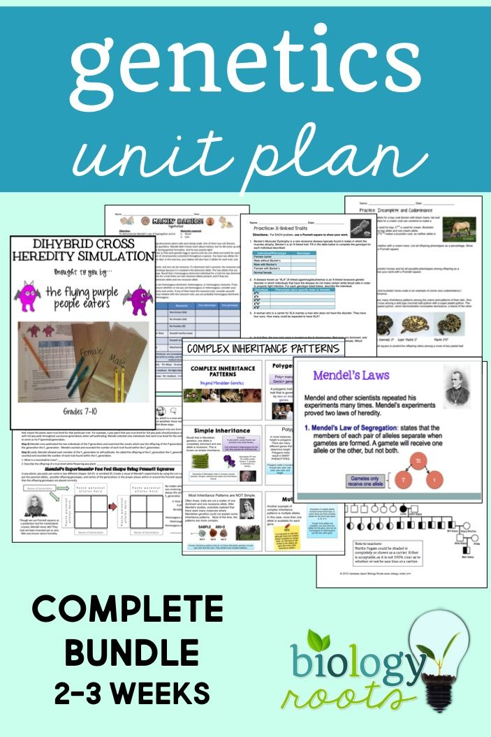 Genetics Bundle With Images Life Science Lessons Biology