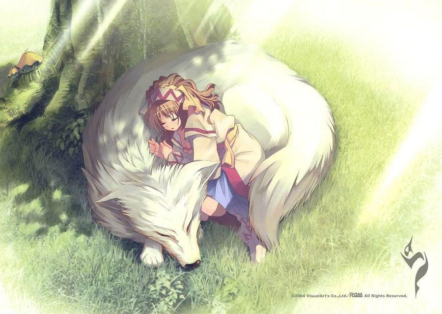 Girl With Wolf Anime Anime Art Girl Dark Fantasy Art