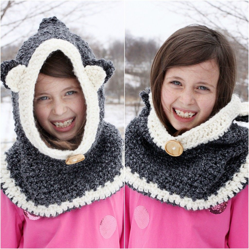 Crocheted hooded cowl easy version crochet hooded cowl hooded crocheted hooded cowl easy version bankloansurffo Images