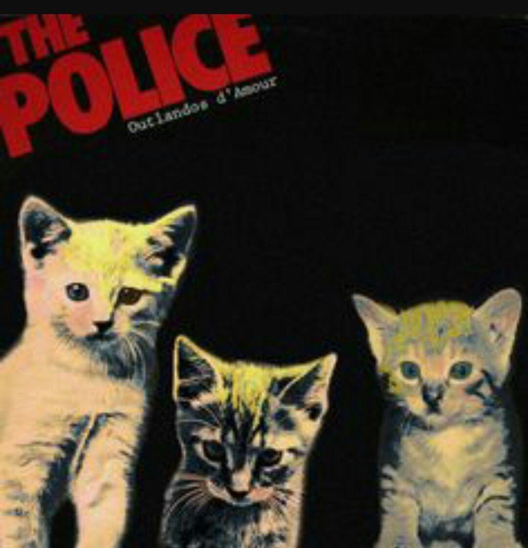 Pin By Cindi Switzer On Cats Music Classic Album Covers Rock Album Covers Album Covers