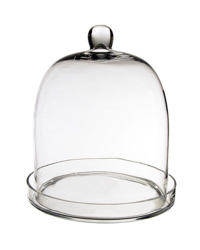 Glass Cloche with Tray (including Glass Tray) with Height 11 inches #GCL110/11 by ModernVase on Etsy https://www.etsy.com/listing/221399500/glass-cloche-with-tray-including-glass