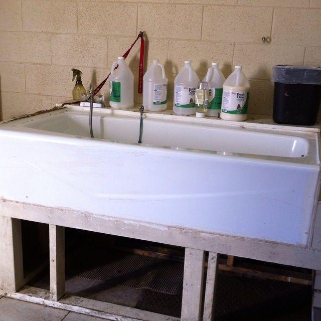 Image result for dog wash station uk dogs pinterest dog image result for dog wash station uk solutioingenieria Images