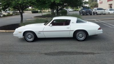 1980 camaro berlinetta mine was gold with black louvers on for 1980 camaro rear window louvers