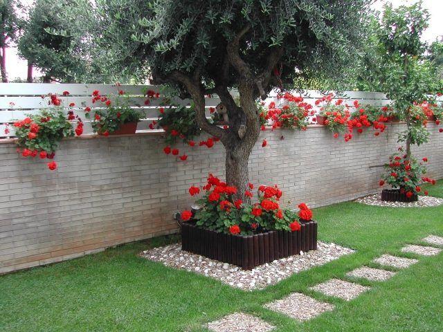 Gartengestaltung Baum Rote Geranien Hochbeet Trittsteine Gartenmauer