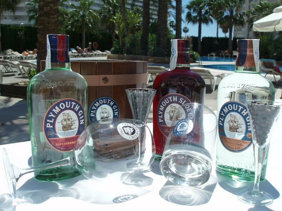 #gintime #gintonic #summer @plymouthgin_es