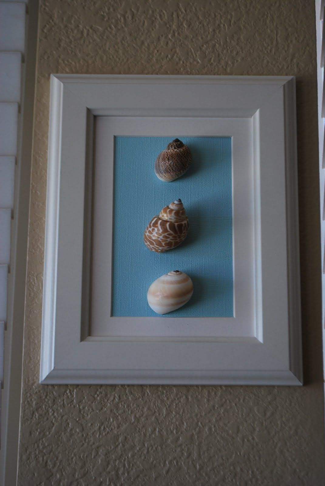 Blukatkraft Diy Quick Easy Wall Art For Bathroom: Sea Shell Crafts {bathroom W/ Costa Rica Shells}