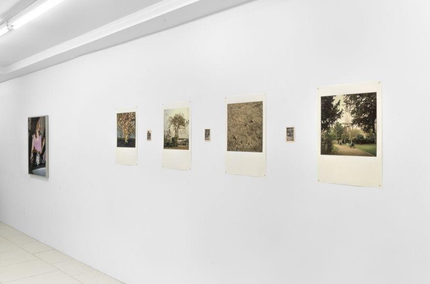 Dragana Jurisic - Exhibitions - Rawson Projects
