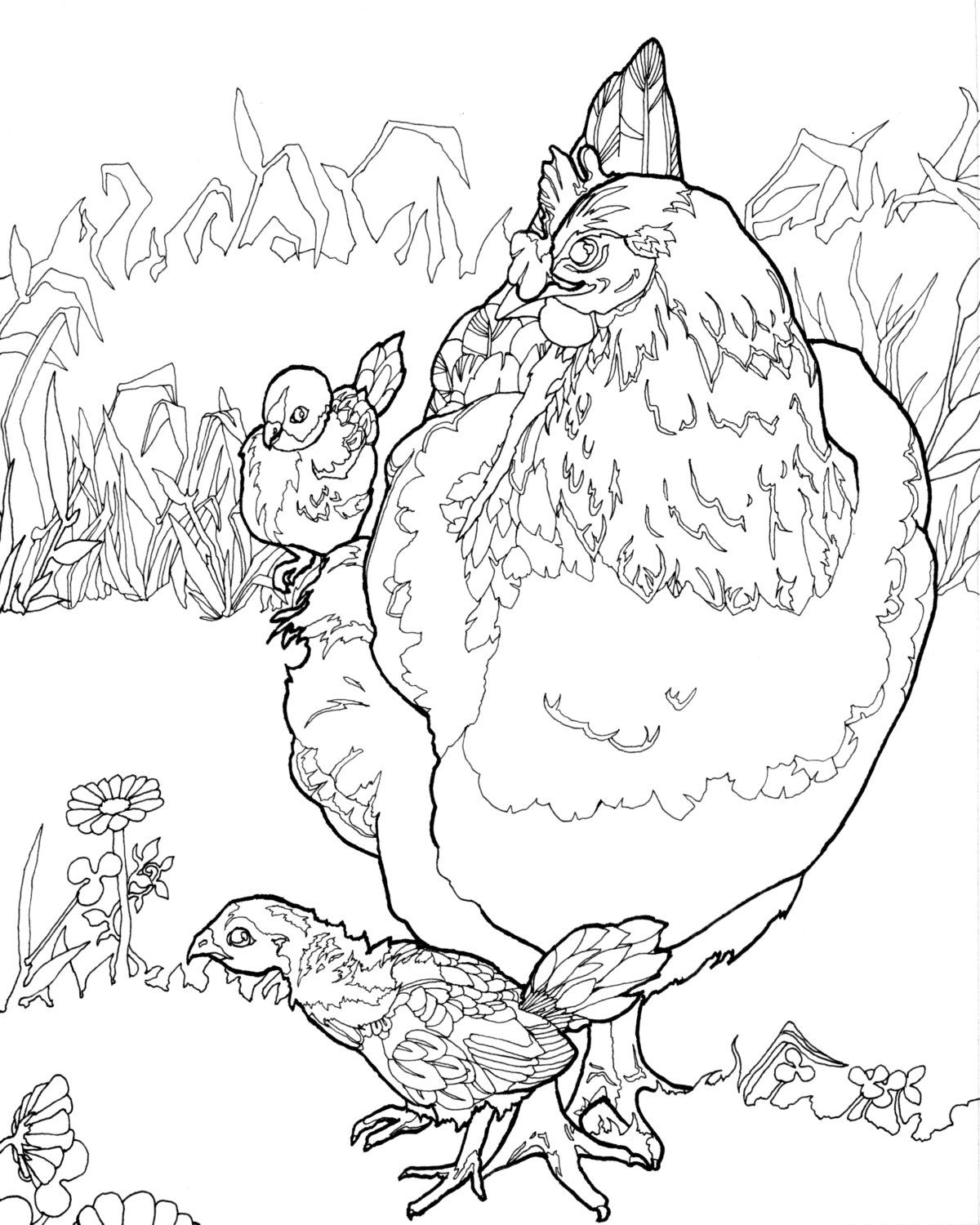 hen and coloring pages virtren com