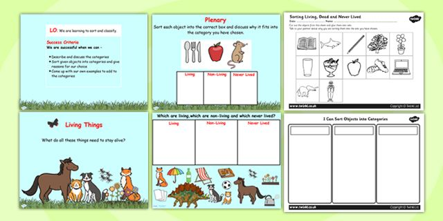 Habitats- Sorting living things and non living things science ...