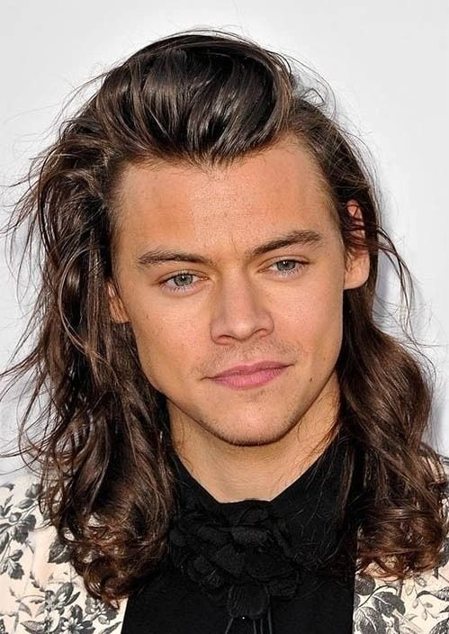 Best Harry Styles Haircut 2019 43 Hairstyles To Rock Harry Styles Haircut Harry Styles Hair Harry Styles Photos
