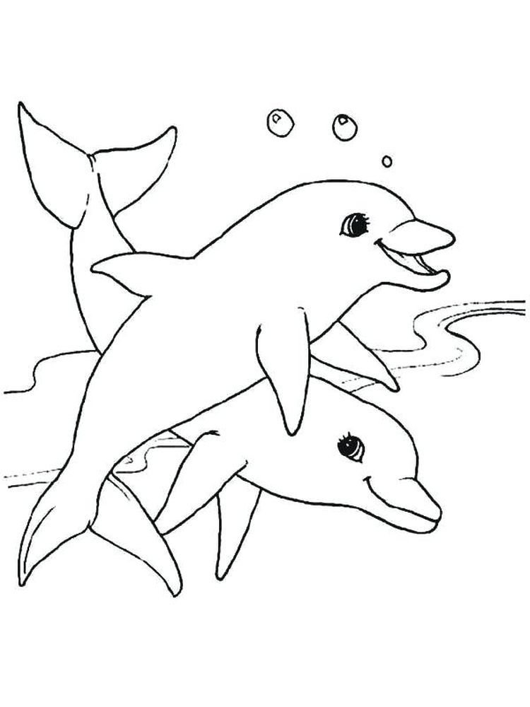 Pin On Dolphin Coloring Pages