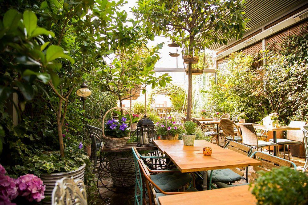 Jardin Salvador Bachiller Jardines Secretos Secretos De Madrid Terrazas Madrid