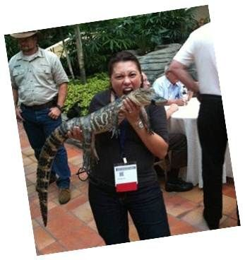 The lengths our recruiters will go through to find top talent.  Senior Recuiter Gina Smethurst will even wrestle alligators!