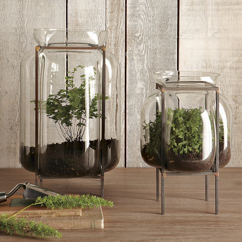 Glass Terrariums with Metal Stands #Terrarium