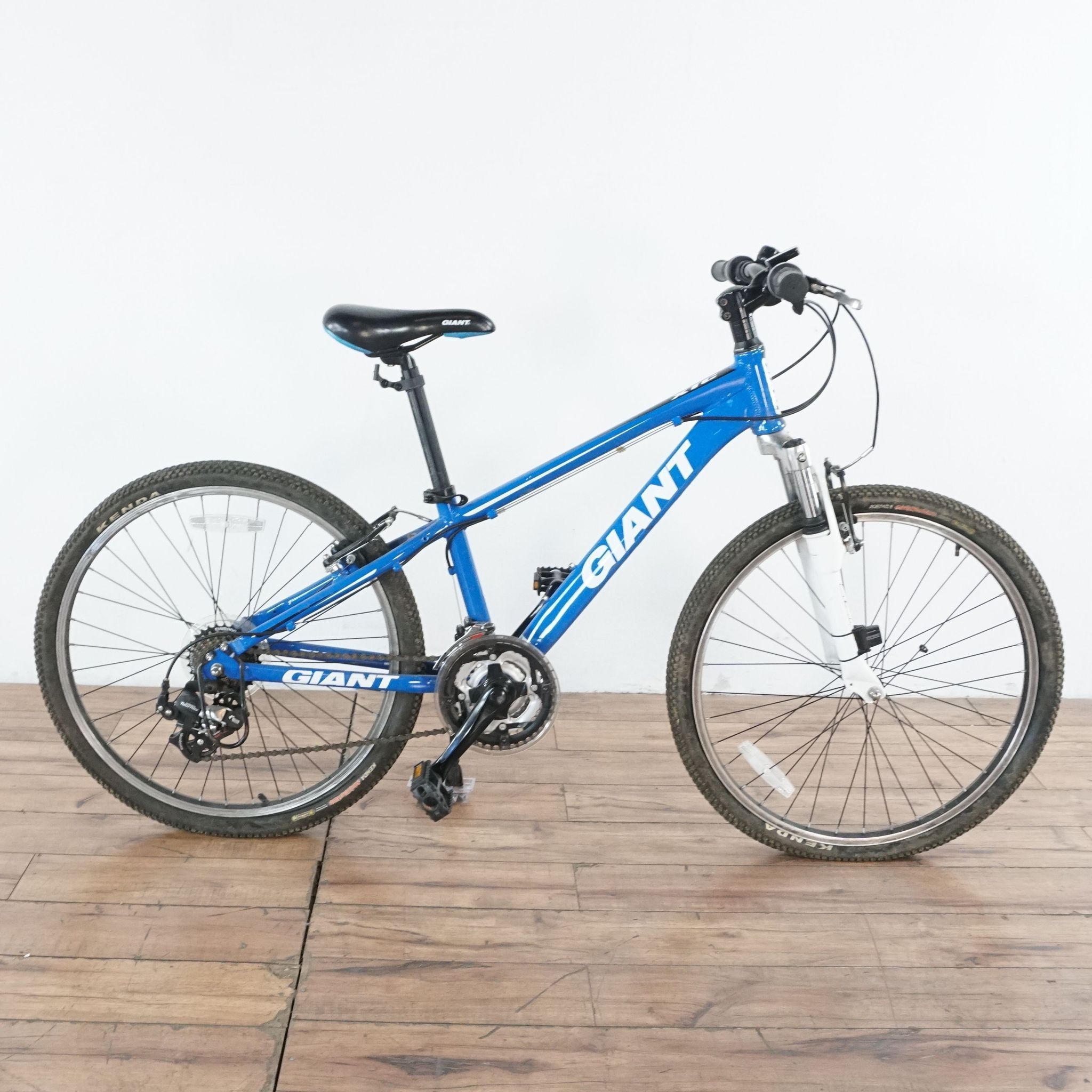 Blue Giant Bike In 2020 Giant Bikes Bike Giants