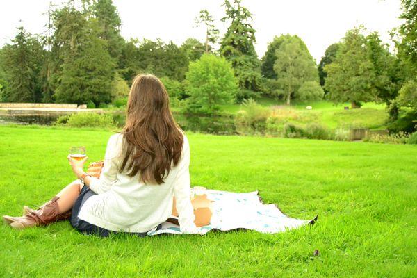 La chica de la casa de caramelo: De picnic en la campiña inglesa