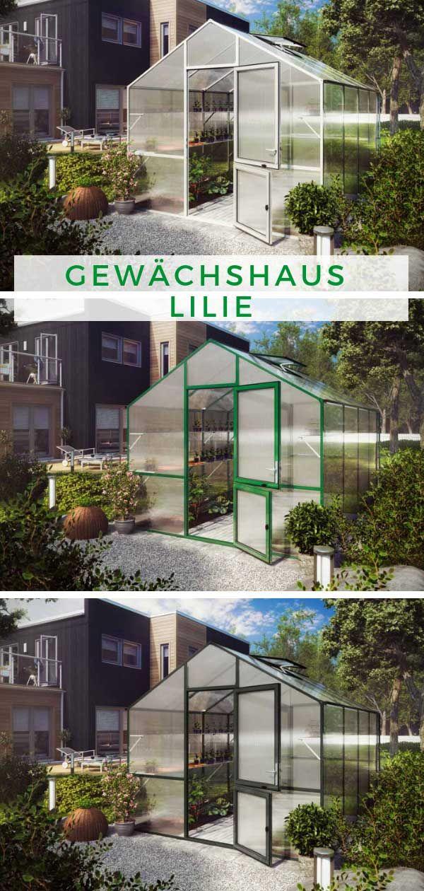 Gewächshaus Lilie III, pressblank Gewächshaus, Gewächs