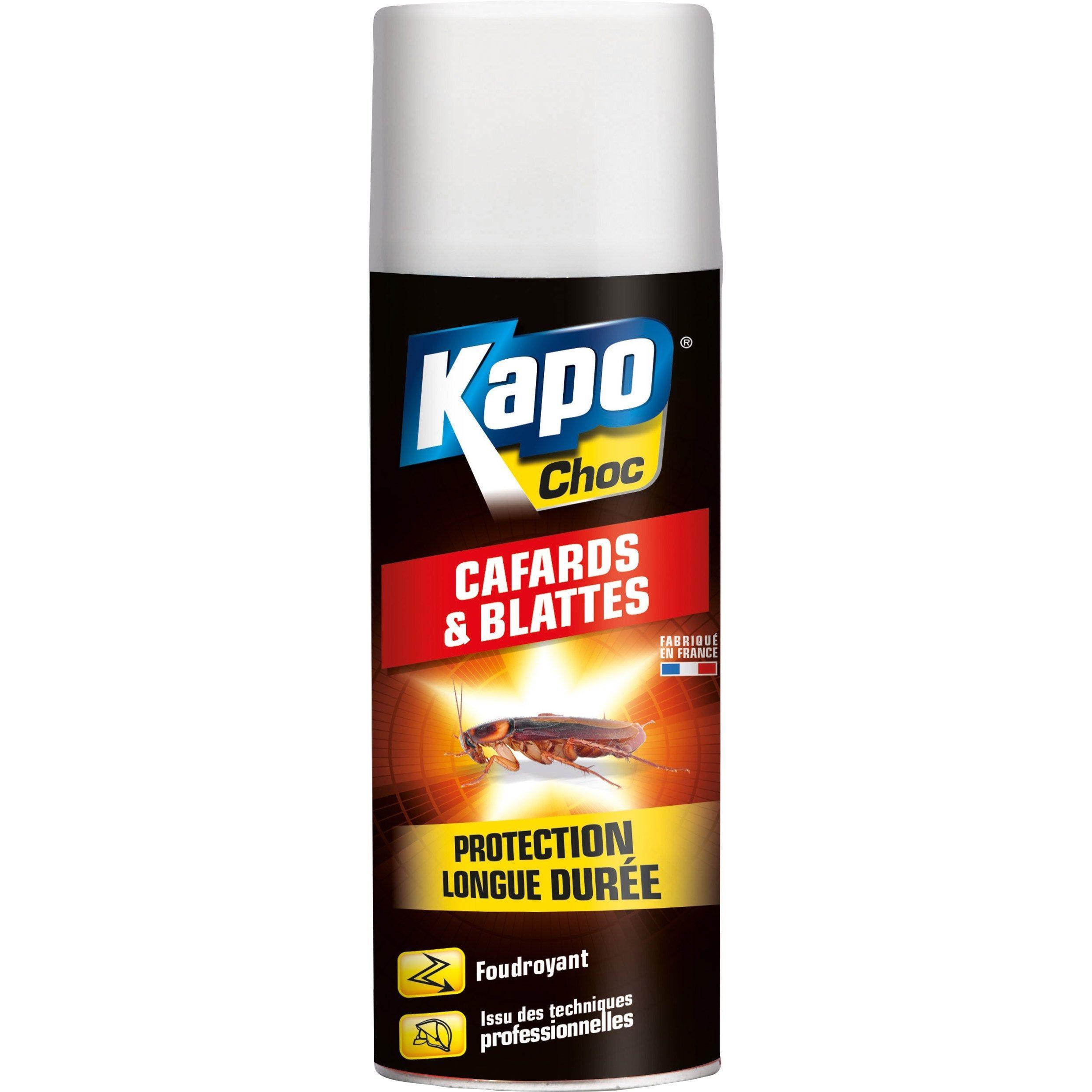 Aerosol Insecticide Pour Cafards Et Blattes Kapo 0 4 L Insecticide Aerosol Cafards