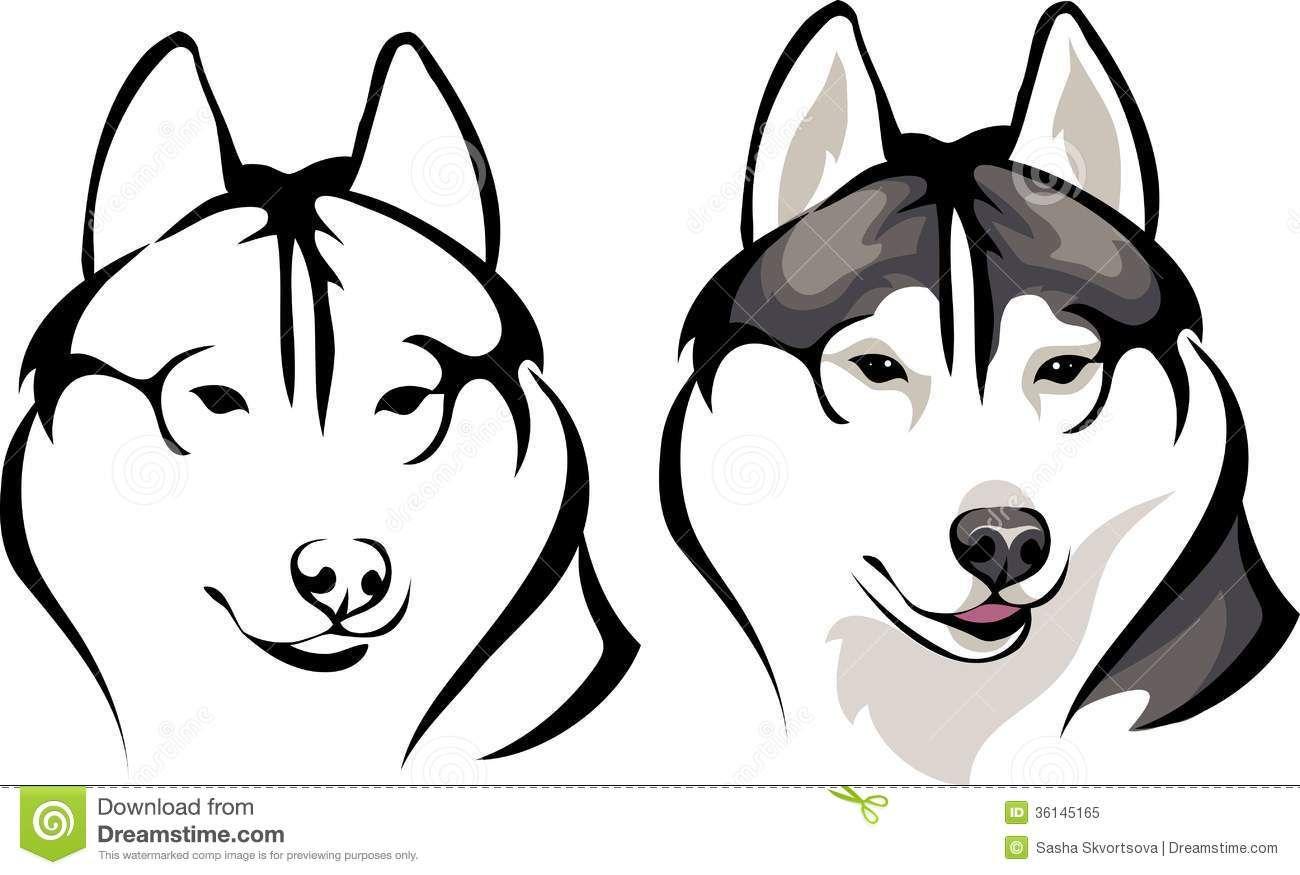 Smiling Husky Stock Vector Illustration Of Smiling Husky
