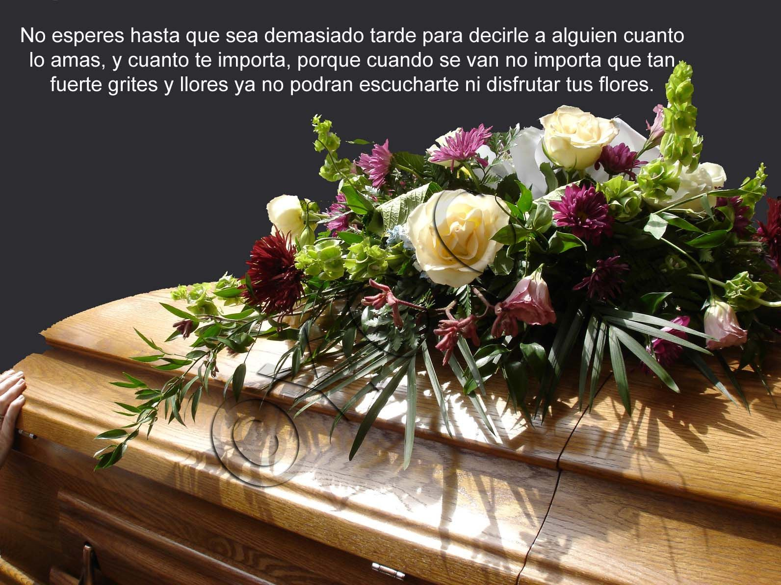Pin By Luca Chacn On Frases Y Otrxs Pinterest Funeral Funeral