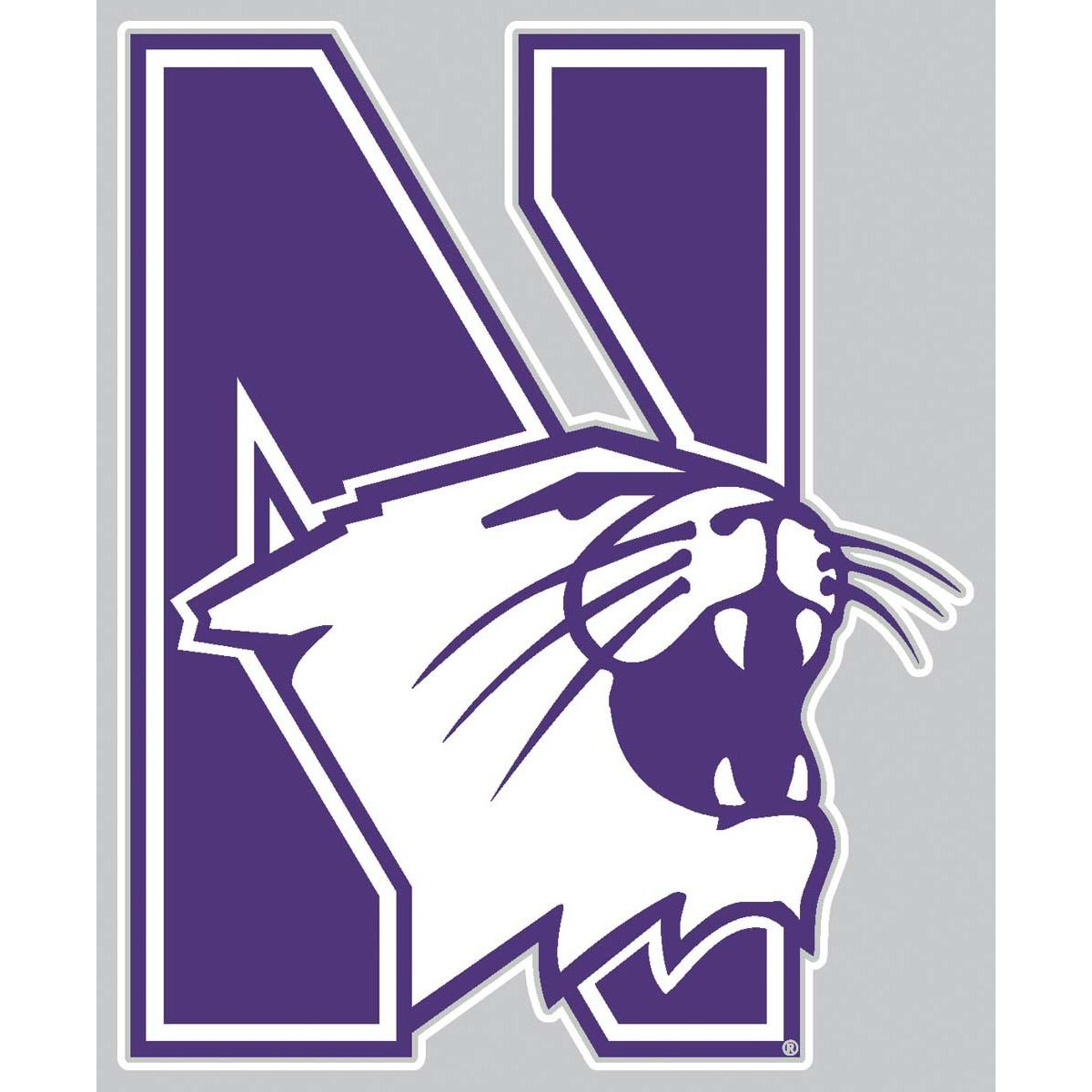 Campus Colors College Mlb Nba And Nfl Apparel And Merchandise Northwestern Wildcats Wild Cats Northwestern University