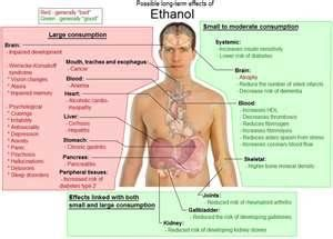 Effects of ETOH