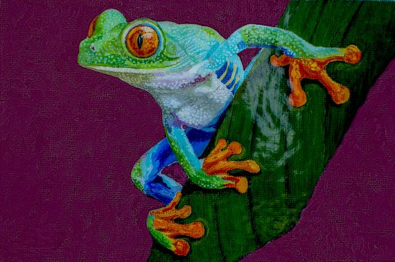 Red Eyed Tree Frog Original Oil Painting 4x6in