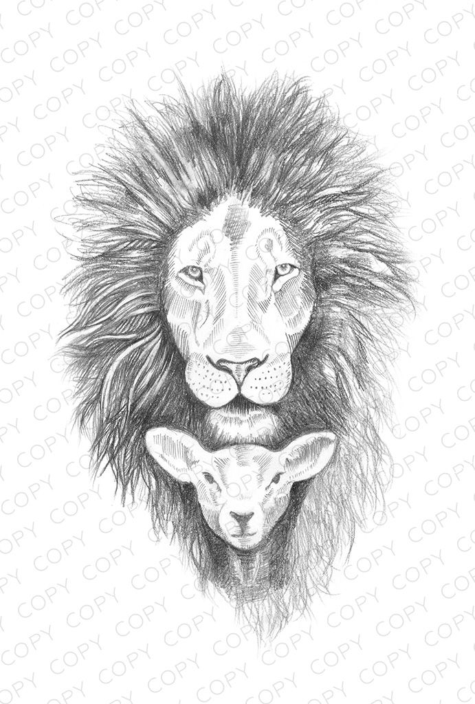 Coloring Pages Lion And Lamb Tattoo Design Drawings Drawings