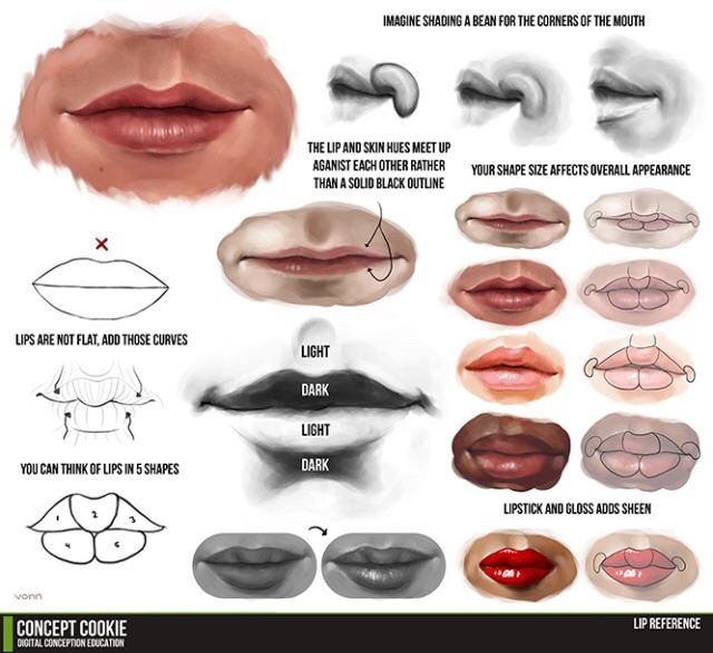 drawing different mouth types | Lips drawing, Digital ...