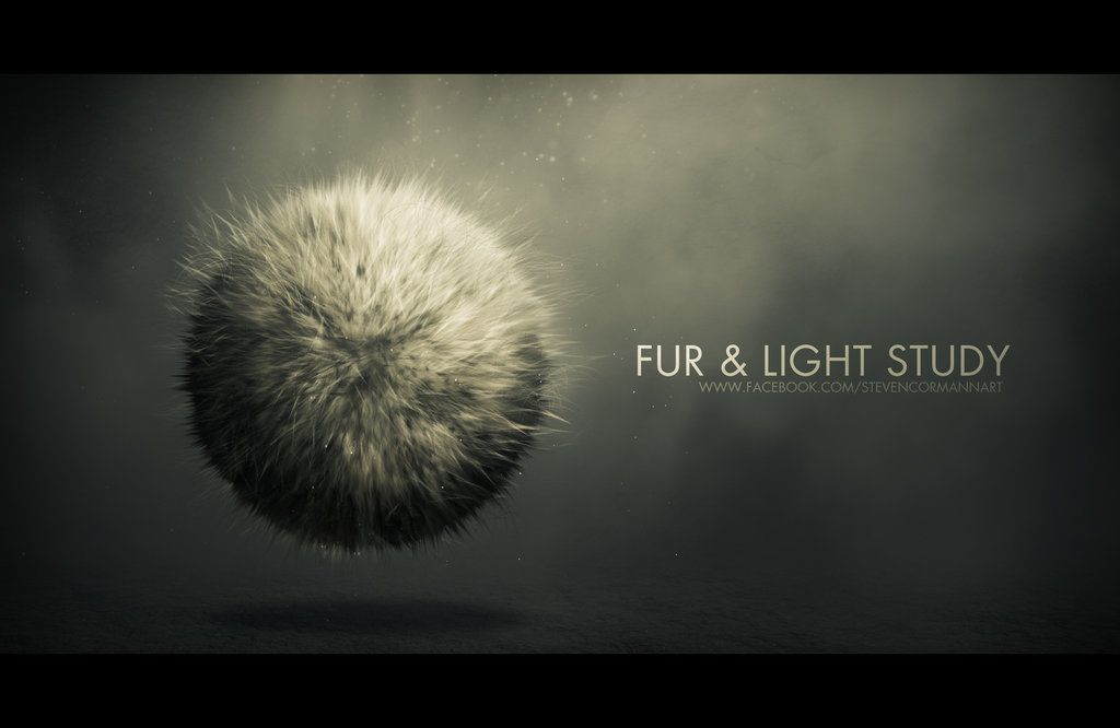 Fur and light study by StevenCormann.deviantart.com on @DeviantArt