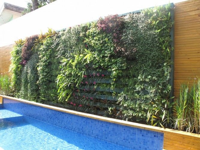 jardim vertical rio de janeiro:jardim vertical na piscina – Pesquisa Google