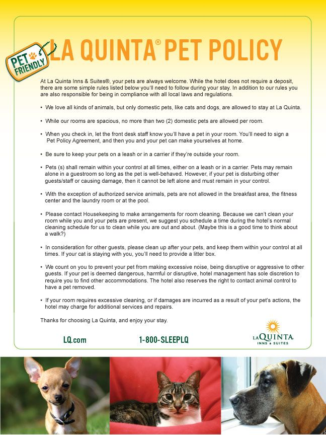La Quinta Pet Policy Hotel Discount Traveling By Yourself