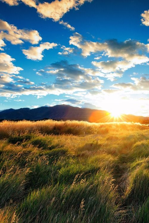 l0stship:  Calm Morning Sunrise (source) / by Mirai