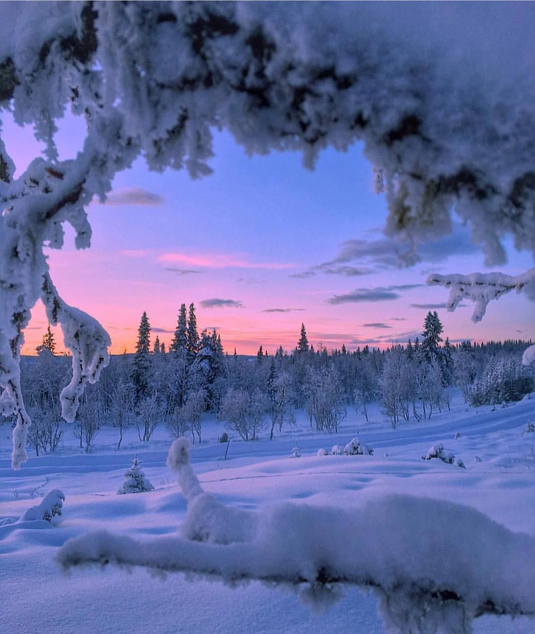 Sunset In The North Good Night Insta Captured By Jorgensenelisabeth Winter Landscape Winter Scenery Winter Pictures