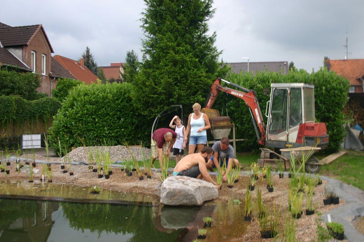 Schwimmteich Bei Hannover Schwimmteich Teich Und Schwimmen