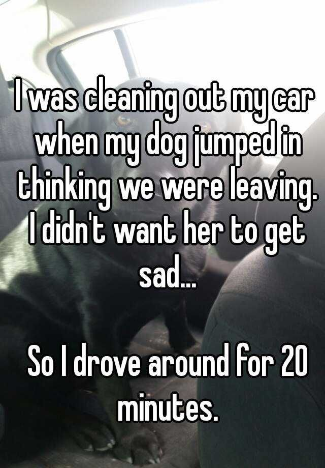 19 Deeply Dogtacular Confessions Cute stories, Whisper