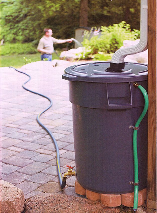 Collect And Use Rainwater Rain Barrel Outdoor Projects Backyard