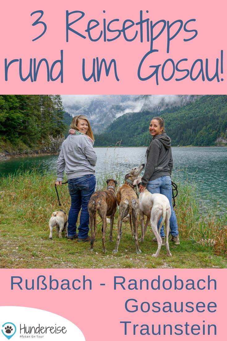 Urlaub Mit Hund Russbach Gosau Traunsee Salzburg Oberosterreich Hundereise Urlaub Mit Hund Urlaub Hunde