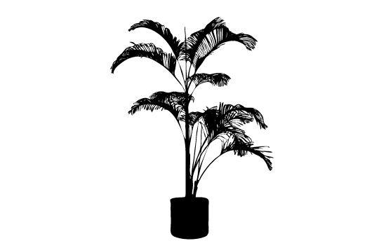 Potted Plants Silhouette Vectors Silhouet Potplanten