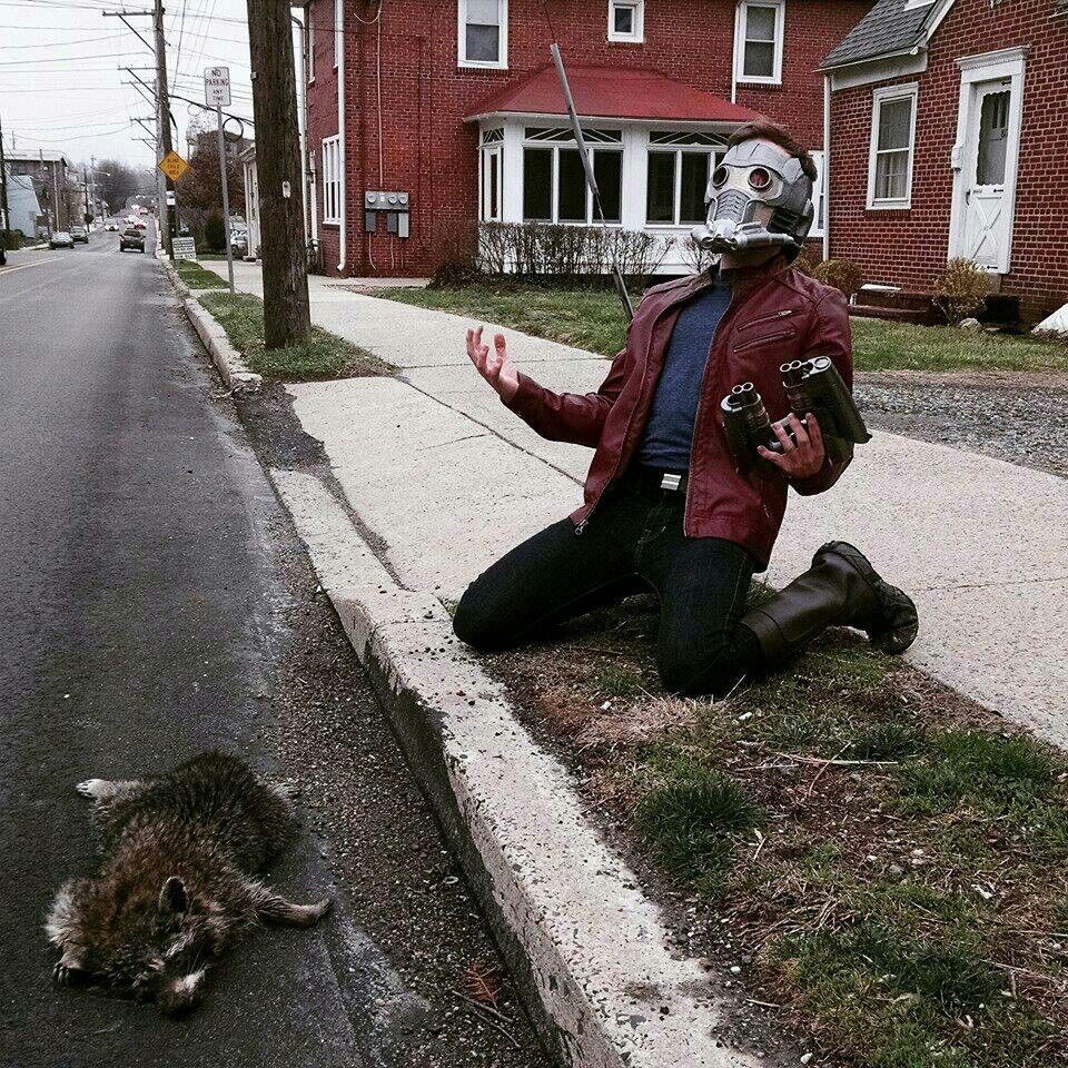 Peter quill and rocket