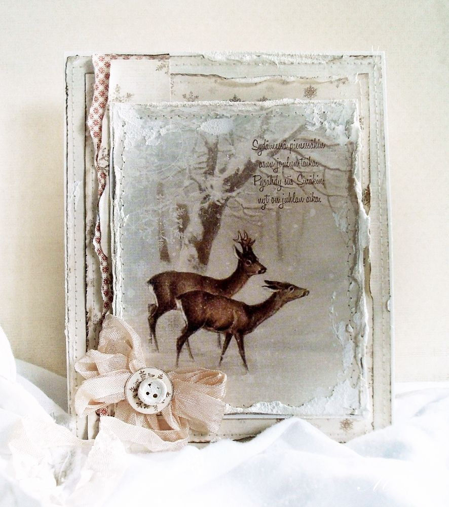 Deer – Wintertime in Swedish Lapland   Winter And Christmas Cards ...