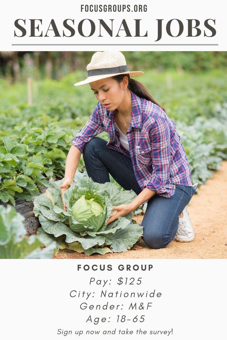 Focus group on seasonal jobs focus group seasonal jobs