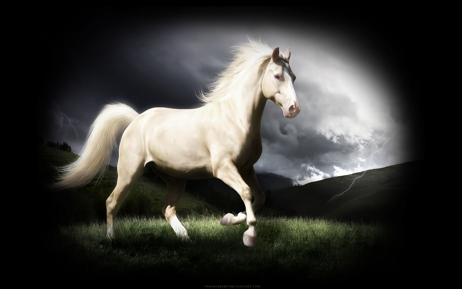 Download Wallpaper Horse Iphone 5s - 228dbe214b625bbee8b6336ee10c75d2  Image_592940.jpg